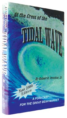 At the Crest of the Tidal Wave - A Forecast for the Great Bear Market